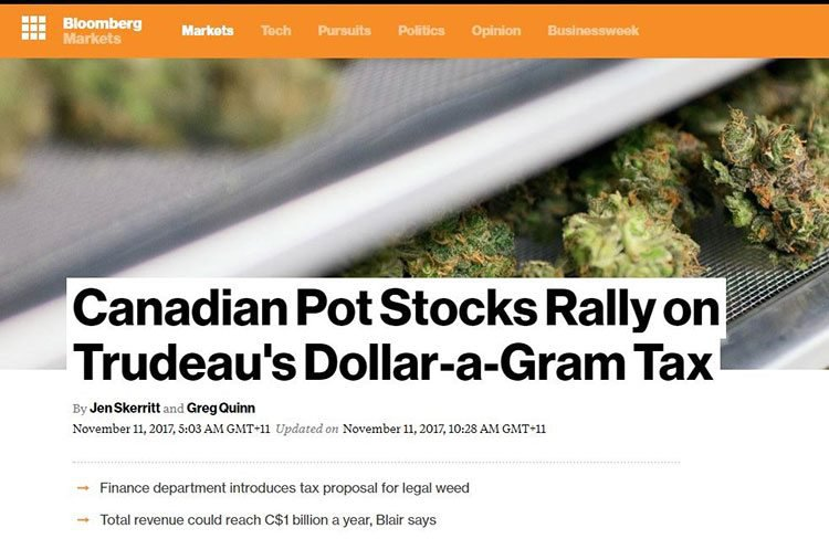 creso canadian pot stock