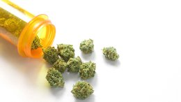 CPH Signs Exclusive Cannapharm deal: On Track for 2017 Product Release