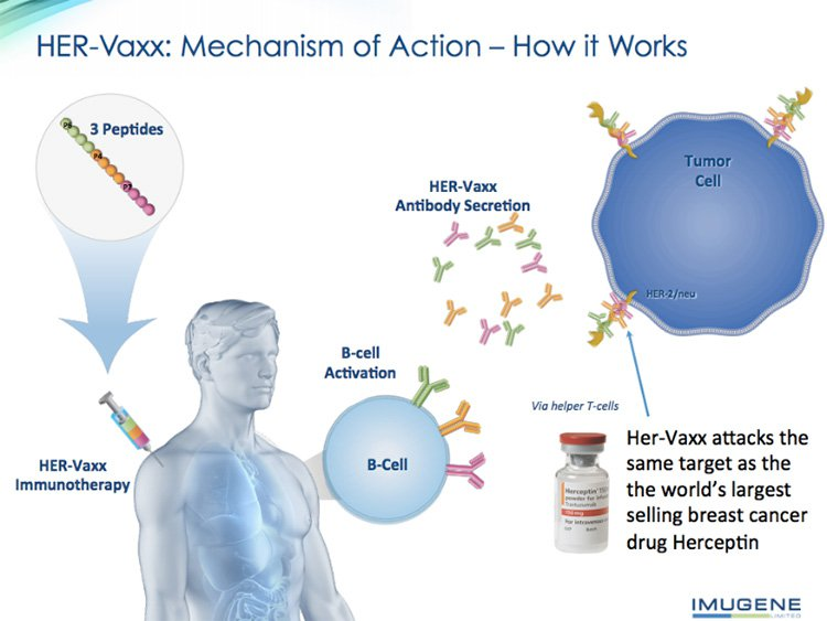Could this ASX Cancer Therapy Junior Attract a Billion