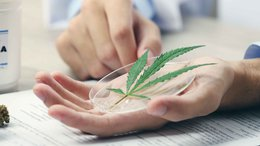 First Revenues from MXC's Cannabidiol Cosmetics Line Imminent